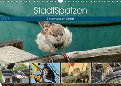 StadtSpatzen (Wandkalender 2019 DIN A3 quer)