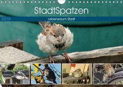 StadtSpatzen (Wandkalender 2019 DIN A4 quer)