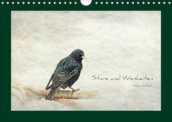 Stare und Weisheiten (Wandkalender 2018 DIN A4 quer) von Hultsch,  Heike