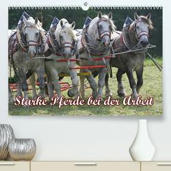 Starke Pferde bei der Arbeit (Premium, hochwertiger DIN A2 Wandkalender 2021, Kunstdruck in Hochglanz) von Lindert-Rottke,  Antje