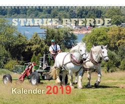 Starke Pferde Kalender 2019 von Schroll,  Erhard