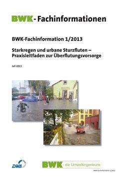 Starkregen und urbane Sturzfluten – Praxisleitfaden zur Überflutungsvorsorge. Ausgabe Juli 2013.