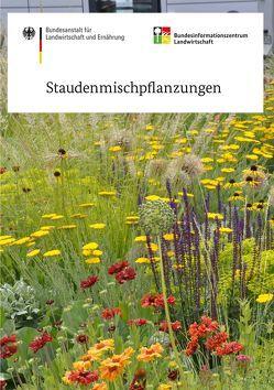 Staudenmischpflanzungen von Cassian,  Schmidt, Jessica,  Fenzl, Kircher,  Wolfram, Schönfeld,  Philipp