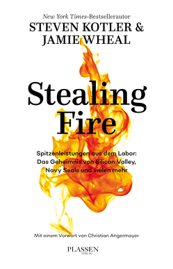 Stealing Fire von Kotler,  Steven, Mania,  Hubert, Wheal,  Jamie