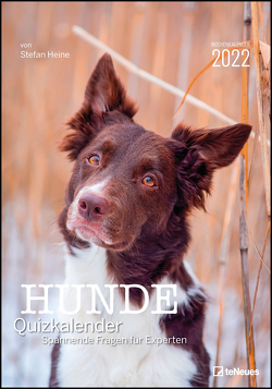 Stefan Heine Hunde Quizkalender 2022 Wochenkalender – Quizkalender – Rätselkalender – Jede-Woche-neue-Rätsel – Tierkalender – 23,7×34 von Heine,  Stefan