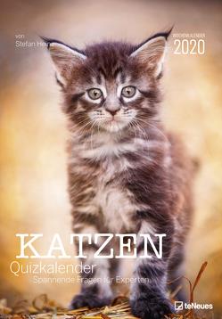Stefan Heine Katzen-Quiz 2020 Wochenkalender