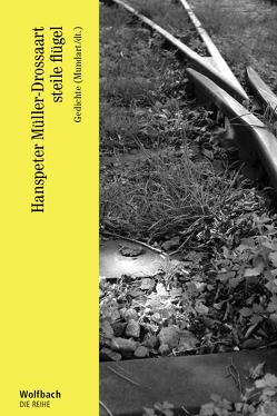 steile flügel von Müller-Drossaart,  Hanspeter