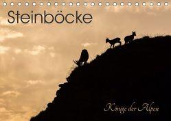 Steinböcke – Könige der Alpen (Tischkalender 2019 DIN A5 quer) von Weber - tiefblicke.ch,  Mel