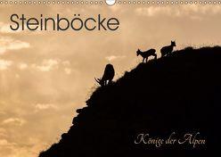 Steinböcke – Könige der Alpen (Wandkalender 2019 DIN A3 quer) von Weber - tiefblicke.ch,  Mel