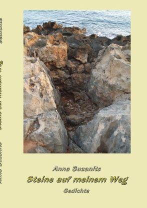 Steine auf meinem Weg von Buzanits,  Anna