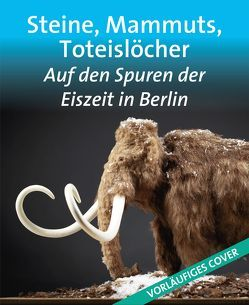 Steine, Mammuts, Toteislöcher von Witzel,  Beate