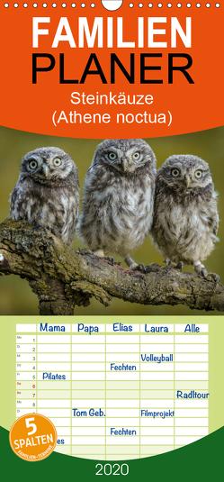 Steinkäuze (Athene noctua) – Familienplaner hoch (Wandkalender 2020 , 21 cm x 45 cm, hoch) von Rusch,  Winfried