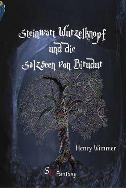 Steinwart Wurzelknopf und die Salzseen von Birudur von Lichter,  Christine, Schweitzer,  Karin, Wimmer,  Henry