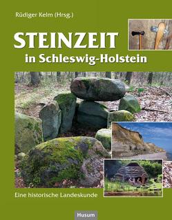 Steinzeit in Schleswig-Holstein von Bork,  Hans-Rudolf, Hartz,  Sönke, Kelm,  Rüdiger