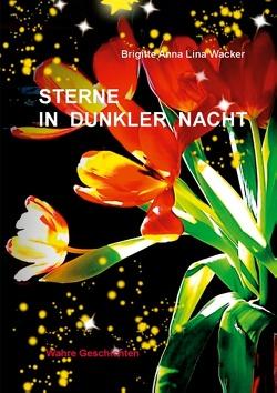 Sterne in dunkler Nacht von Wacker,  Brigitte Anna Lina