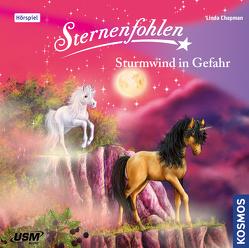 Sternenfohlen (Folge 15): Sturmwind in Gefahr von Chapman,  Linda, United Soft Media Verlag GmbH