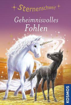 Sternenschweif, 10, Geheimnisvolles Fohlen von Chapman,  Linda, Hull,  Biz