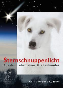 Sternschnuppenlicht von Goeb-Kümmel,  Christine