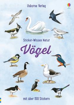 Sticker-Wissen Natur: Vögel von Boyer,  Trevor, Clarke,  Phillip, Testar,  Sue
