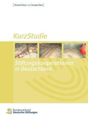 Stiftungskooperationen in Deutschland von Saxe,  Annegret, Theurl,  Theresia