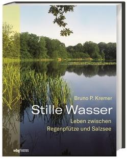Stille Wasser von Kremer,  Bruno P.