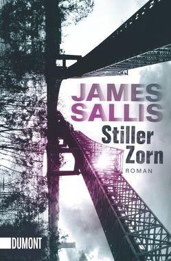 Taschenbücher / Stiller Zorn von Sallis,  James, Schmidt,  Georg