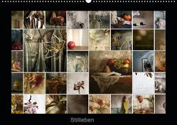 Stillleben (Wandkalender 2020 DIN A2 quer) von Art,  TiLio