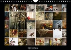 Stillleben (Wandkalender 2020 DIN A4 quer) von Art,  TiLio