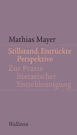 Stillstand. Entrückte Perspektive von Mayer,  Mathias
