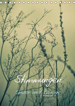 STIMMUNGEN – Gräser und Zweige (Tischkalender 2019 DIN A5 hoch) von Fuchs - atelierfuchs.de,  Horst