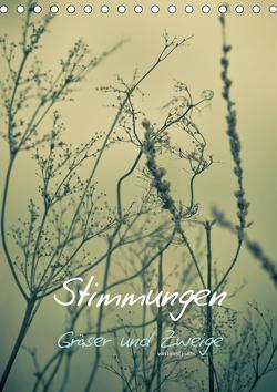 STIMMUNGEN – Gräser und Zweige (Tischkalender 2021 DIN A5 hoch) von Fuchs - atelierfuchs.de,  Horst