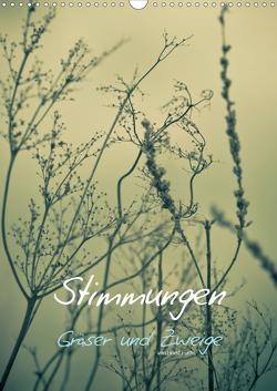 STIMMUNGEN – Gräser und Zweige (Wandkalender 2021 DIN A3 hoch) von Fuchs - atelierfuchs.de,  Horst