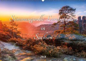 Stimmungsvolle Landschaften in Sachsen 2018 (Wandkalender 2018 DIN A2 quer) von Beyer (Moqui),  Daniela