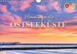 Stimmungsvolle Ostseeküste 2019 (Wandkalender 2019 DIN A4 quer)