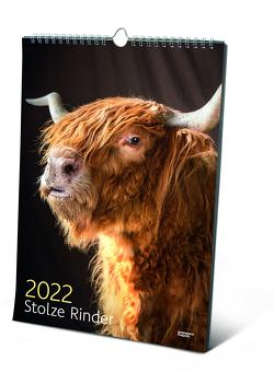 Stolze Rinder von Jarisch,  Manfred