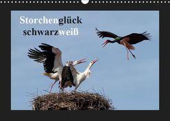 Storchenglück schwarzweiß (Wandkalender 2019 DIN A3 quer) von Bachmeier,  Günter