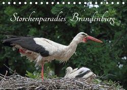 Storchenparadies Brandenburg (Tischkalender 2018 DIN A5 quer) von Konieczka,  Klaus