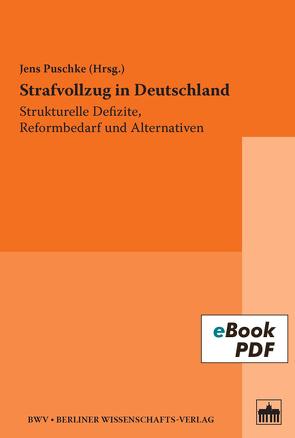 Strafvollzug in Deutschland von Puschke,  Jens