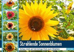 Strahlende Sonnenblumen (Tischkalender 2019 DIN A5 quer) von Sigwarth,  Karin