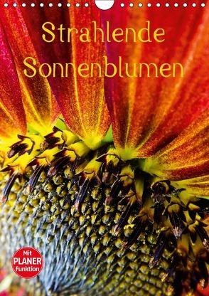 Strahlende Sonnenblumen (Wandkalender 2018 DIN A4 hoch) von Sigwarth,  Karin