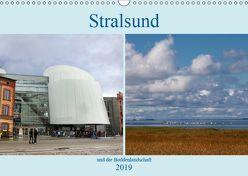 Stralsund und die Boddenlandschaft (Wandkalender 2019 DIN A3 quer) von Dürr,  Brigitte