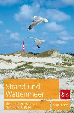 Strand und Wattenmeer von Quedens,  Georg