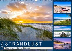 STRANDLUST: Fischland-Darß-Zingst (Wandkalender 2019 DIN A3 quer) von Dreegmeyer,  Andrea