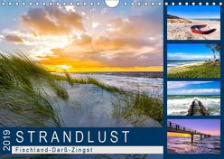STRANDLUST: Fischland-Darß-Zingst (Wandkalender 2019 DIN A4 quer) von Dreegmeyer,  Andrea