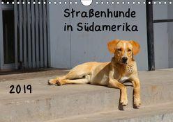 Straßenhunde 2019 (Wandkalender 2019 DIN A4 quer) von Gerken,  Jochen