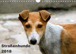 Straßenhunde (Wandkalender 2018 DIN A4 quer) von Bakker,  Antje