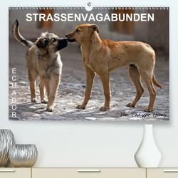 STRASSENVAGABUNDEN (Premium, hochwertiger DIN A2 Wandkalender 2020, Kunstdruck in Hochglanz) von Henry,  Philippe