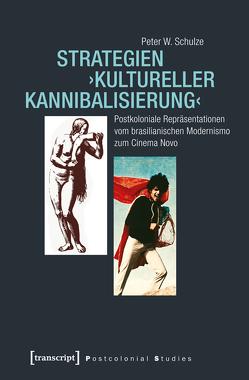Strategien ›kultureller Kannibalisierung‹ von Schulze,  Peter W.