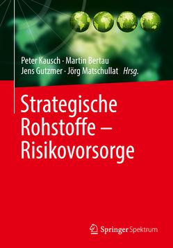 Strategische Rohstoffe — Risikovorsorge von Bertau,  Martin, Gutzmer,  Jens, Kausch,  Peter, Matschullat,  Jörg