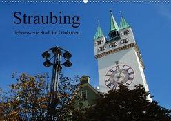 Straubing, liebenswerte Stadt im Gäuboden (Wandkalender 2018 DIN A2 quer) von Stein,  Karin